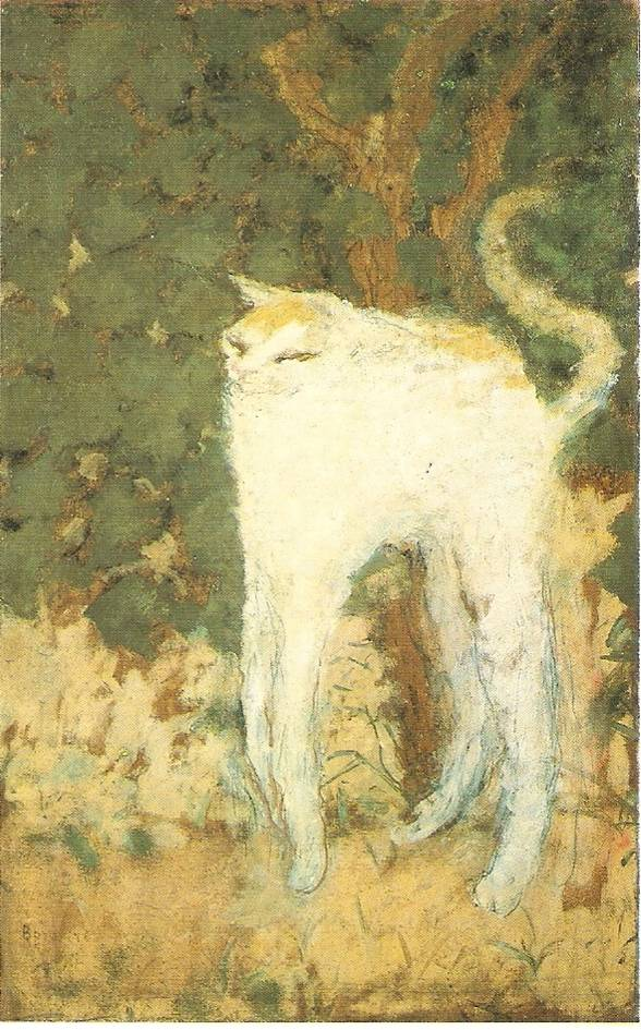 bonnard-chat (1)