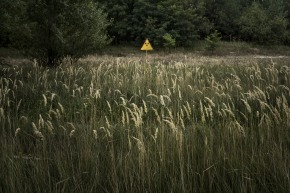 (Re)vue du web: les enfants deTchernobyl