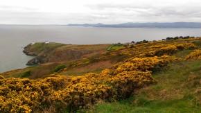 Voyage voyage : Dublin en 3 jours, top chrono ! Jour3