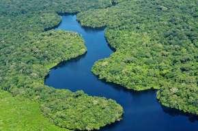 Un «Novo Futuro» environnemental pour le Brésil?